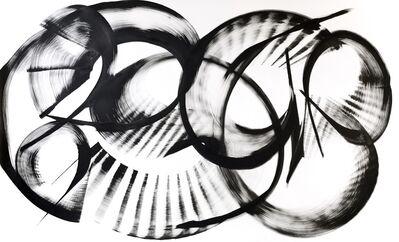 Thomas Hammer, 'Neomacounia Nitida (framed)', 2015