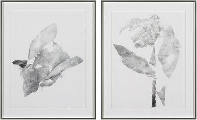 Michael Müller, 'Plural als Solitär Nr. 1 and Nr. 2', 2018
