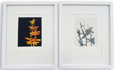 Jonas Wood, 'Untitled (Orchid 1 & 2)', 2015