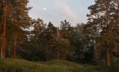 Julius von Bismarck, 'Landscape Painting (Forest)', 2016