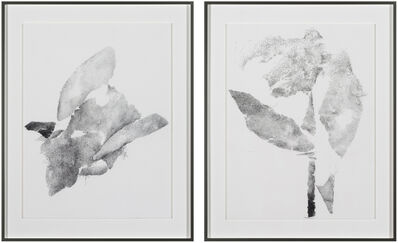 Michael Müller, 'Plural als Solitär Nr. 1 and Nr. 2', 2018