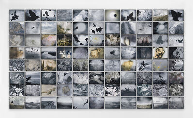 Michelle Stuart, 'Flight of Time', 2016