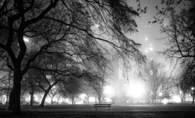 Kirill Polevoy, 'Lincoln Park Fog, Chicago', 2013