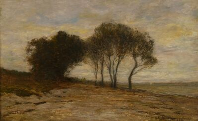 Homer Dodge Martin, 'South Side Long Island', 1894