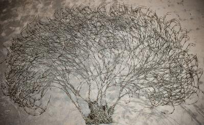 Abdul Rahman Katanani, 'Olive Tree', 2015