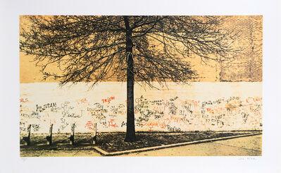 Jon Naar, 'Tree from Faith of Graffiti', 1974