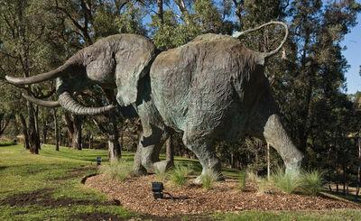 Mark Coreth, 'Charging Bull Elephant', 2012