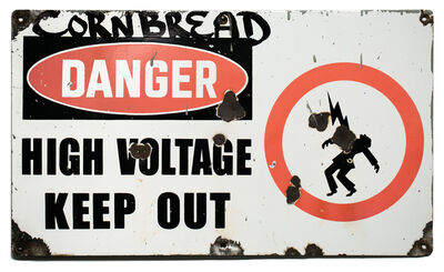 Cornbread, 'Danger High Voltage Keep Out', 2019