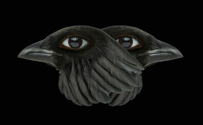 Agnieszka Polska, 'Birds', 2018