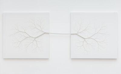 Janaina Mello Landini, 'Ciclotrama 41 (parallel universe)', 2016