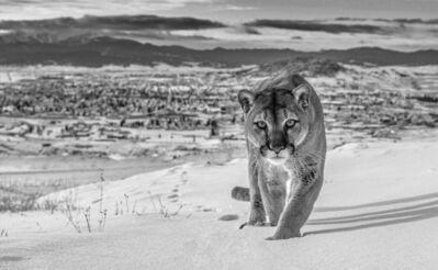 David Yarrow, 'Frontier Town, Butte, Montana, USA', 2020