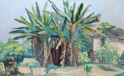 John Augustus Avis, 'Banana Trees', 1968