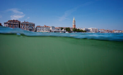 Ha Eul, 'Amphibious Eye Project Venice', 2011