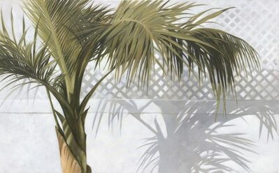 """Michel Brosseau, '""""Palm with Shadow"""" oil painting of green palm leaves with white background', 2019"""