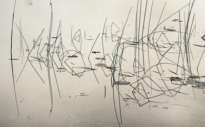 Roman Loranc, 'Miro's Fish', 2014