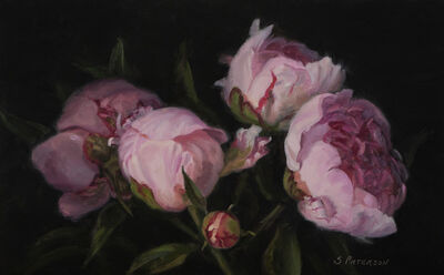 Susan Paterson, 'Pink Peony Study', 2019