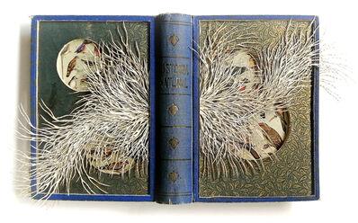 Barbara Wildenboer, 'Historia Naturel', 2019