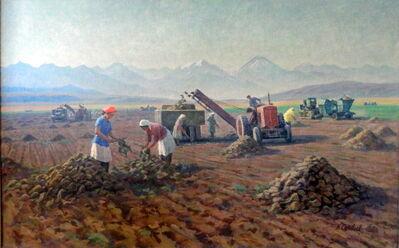 Nikolai Solovyov, 'Beet Picking', 1966