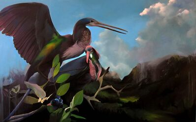 Manu Muñoz, 'Belizean herons', 2016