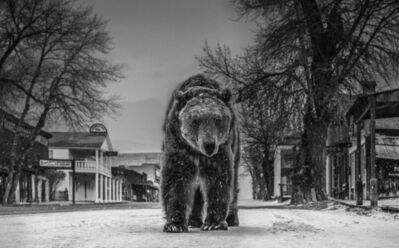 David Yarrow, 'Out Of Towner', 2019
