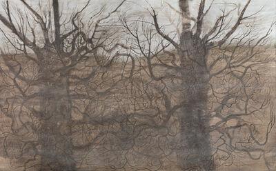 Elina Merenmies, 'Language of Trees', 2008