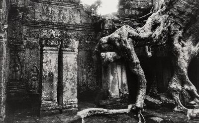 Marc Riboud, 'Temple Gates and Giant Strangling Root Trees, Angkor, Cambodia (2 works)'