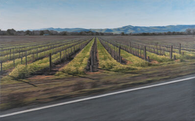 Jennifer Krause Chapeau, 'Vineyard in February', 2013