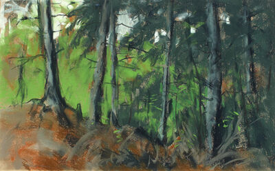 Robert Henri, 'Edge of the Island Woods, Monhegan', 1918