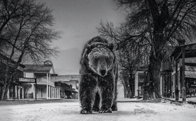 David Yarrow, 'Out of Towner', ca. 2019