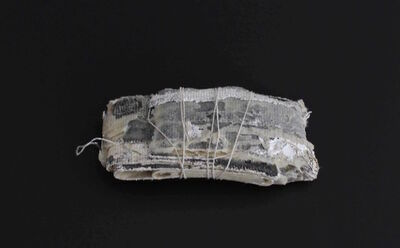 Francisca Aninat, 'N.1, Vacíos de voz', 2019