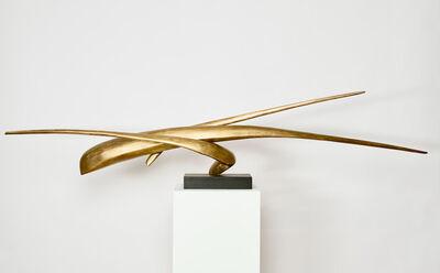 David Borgerding, ' VIDAM', 2019