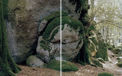 Fabio Barile, 'Ancient and Primeval Beech Forests, Italy (Diptych)', 2020