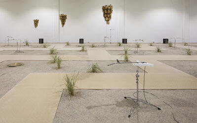 Céleste Boursier-Mougenot, 'from here to ear', 2016