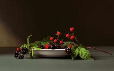 Sharon Core, 'Early American, Blackberries', 2008