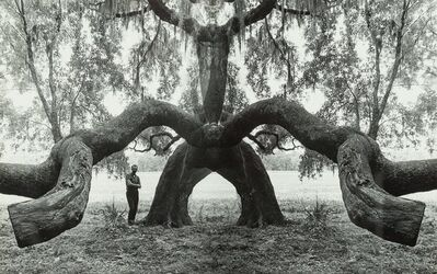 Jerry Uelsmann, 'Untitled (Man and tree)'