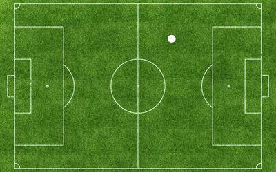 Pep Vidal, 'Football Pitch', 2016
