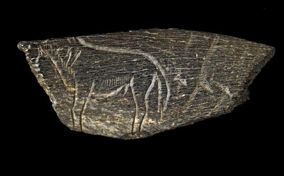 'Engraving of a horse; From Montastruc, France', Palaeolithic
