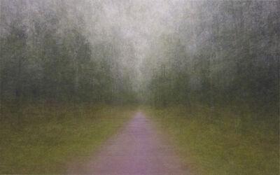 Eeva Karhu, 'Impressio – Path 14', 2011