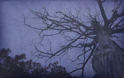 Yansha Zi'an, 'Night No.1', 2013
