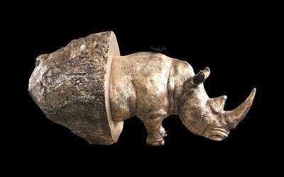 Stefano Bombardieri, 'Rhino Stone', 2017