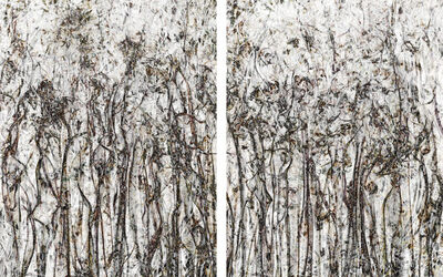 Shai Kremer, 'Perception#25 (Diptych)', 2018