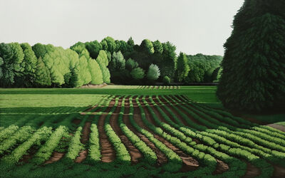 Anita Mazzucca, 'The Farm on Tennent Road', 2019