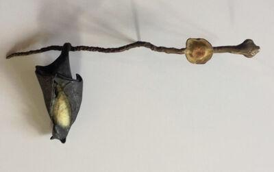 Copper Tritscheller, 'Single Bat on Branch with Small Flower'
