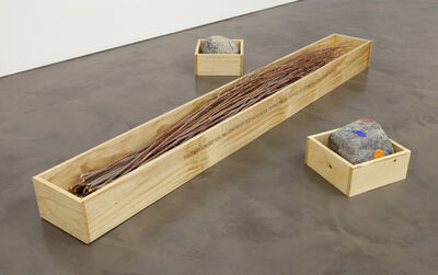 Robert Kinmont, 'TWO EDUCATED 120 MILLION YEAR OLD BOULDERS TRYING TO ENCOURAGE 47 YOUNG WILLOWS TO BE PATIENT  ', 2012