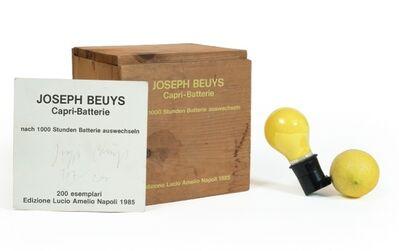 Joseph Beuys, 'Capri-Batterie', 1985