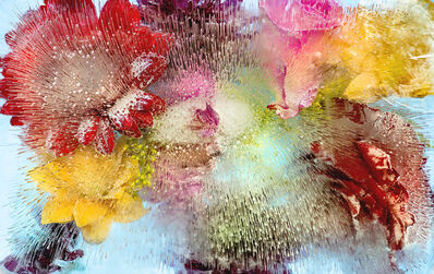 Allan Forsyth, 'Winter Sleep (Aqua Flora)', 2015