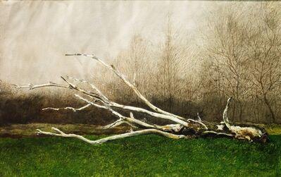Jamie Wyeth, 'Squid', 1970