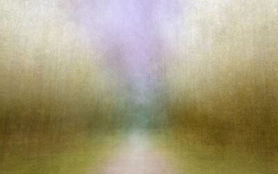 Eeva Karhu, 'Path (moments) Autumn 1', 2019