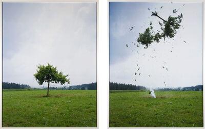 Michael Sailstorfer, 'Raketenbaum', 2008