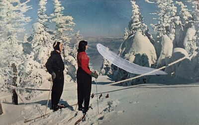 Emily Pettigrew, 'Untitled : Snow', 2020
